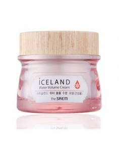 [the SAEM] Iceland Water Volume Cream(For Dry Skin) 80ml