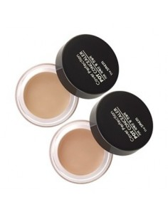 [the SAEM] Cover Perfection Pot Concealer 4g