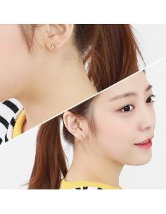 [AS105] Neighbro Earring