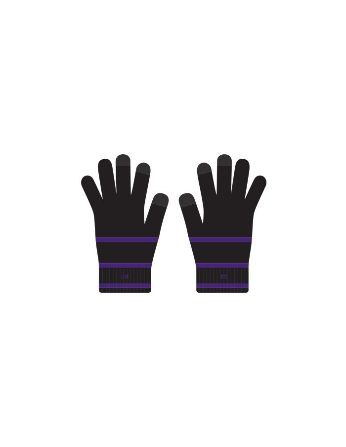 FTISLAND Lee Hong Gi LIVE 302 : Gloves