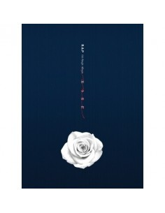 BAP 6th Single Album - ROSE(B ver) CD + Poster