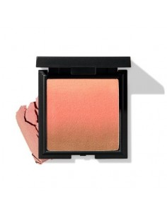 [eSpoir] Color Master Contour Blush 10g (2Colors)